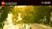 短片《温度变送器 www.hyylyb.cn
