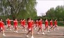 绿绮清河广场舞《洋洋得意》
