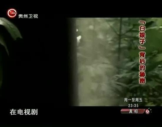 真相 2013第85集精选
