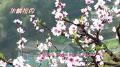 很好听的一曲《三月桃花雨》歌声甜美醉人心!