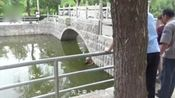 大尴尬:小伙失恋酒后跳河,水不及胸
