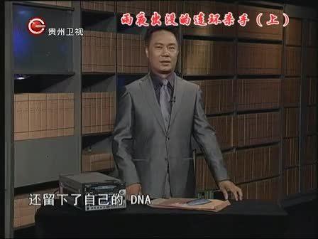 取证 2012第85集精选