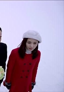 刘涛官方网漫境涛心