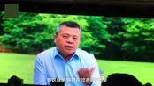 前首富陈天桥露面:44岁已两鬓斑白