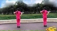 开心玲儿广场舞(美丽的遇见)正背面演示编舞杨丽萍