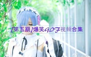 【第五期]爆笑GIF视频合集