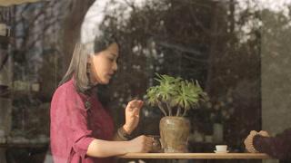 美女茶艺师最爱不完美的他