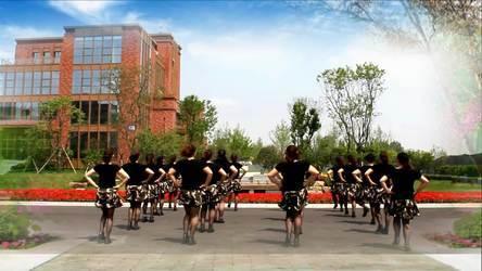 郑蒲港蓝月亮舞蹈队 《饮酒欢歌》 表演 团队版