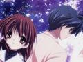 真·清明樱花祭