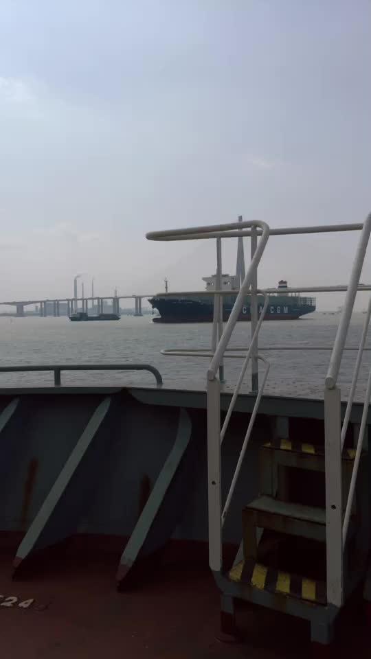 谁在桥上看风景呢