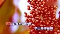 九儿_红高粱-韩红