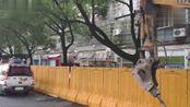 杭州一沿街商铺沿伸平台发生垮塌,无人员伤亡