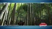 [影视同期声]《开国元勋朱德》热播 王韦智回忆拍马戏遇险 高清全集