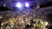澳门永利赌场-吉祥树表演
