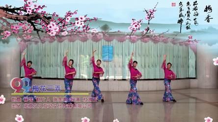 《梅花三弄 正背表演 团队版》厦门海之韵健身队广场舞