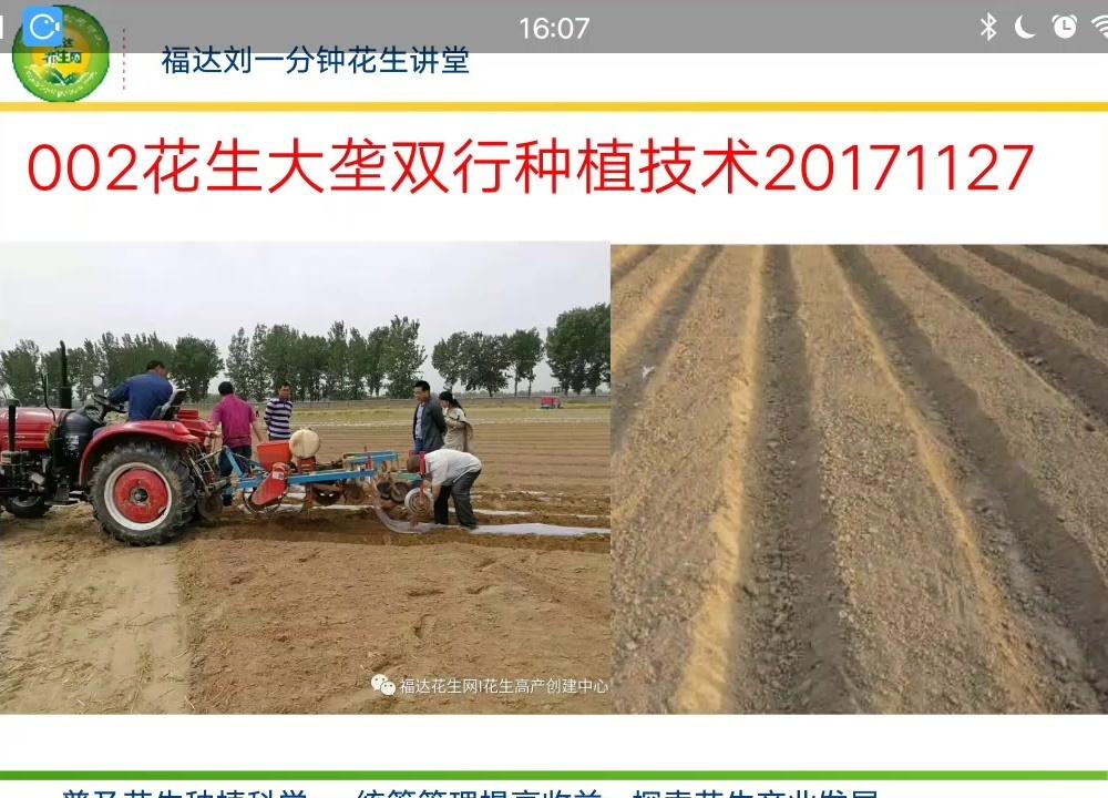 花生比较高产的大垄双行种植模式-福达刘一分钟花生讲堂002