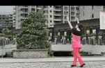 广场舞教学《西藏的天空》