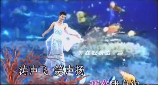 宋祖英经典歌曲MTV大合集