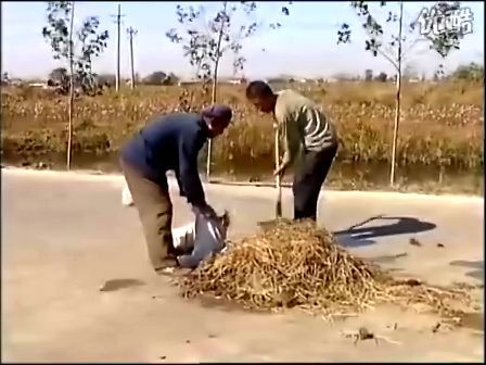 蚯蚓养殖技术2