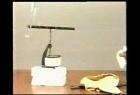 2.电荷间的作用规律