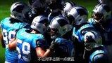 NFL-1314赛季-季后赛-半决赛-卡罗莱纳黑豹vs旧金山49人预告-专题