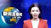 """央视再传最美实习主播 王音棋被赞""""小刘亦菲"""""""