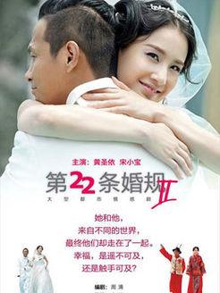 第22条婚规第2部(国产剧)