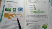 八下生物4.3《能量流动》课本梳理