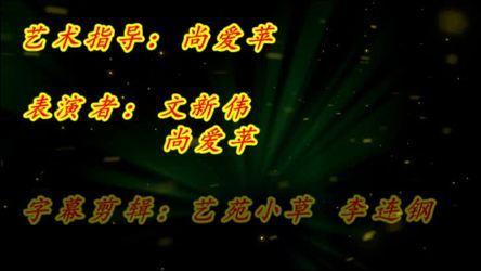 《尚爱苹北京平四(中国美) 中国美 表演 双人版》文新伟