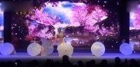 6舞蹈《美人吟》