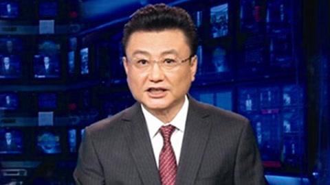 王宁告别《新闻联播》回归家庭